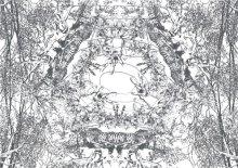 Large Image1: minamori 水面森 / YOKO ITO 伊藤よう子