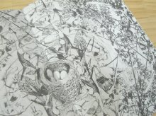 Large Image2: minamori 水面森 / YOKO ITO 伊藤よう子