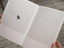 Large Image2: Dying Birds / Nicolai Howalt & Trine Søndergaard