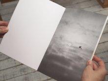 Large Image3: Dying Birds / Nicolai Howalt & Trine Søndergaard