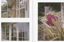 Large Image1: Nikukyu issue #20