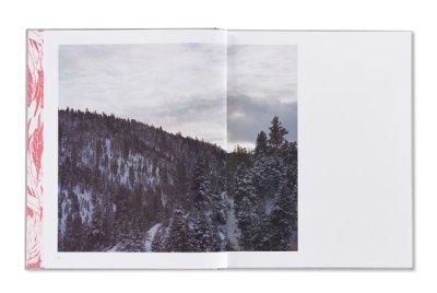 画像2: A PINK FLAMINGO / Jack Latham